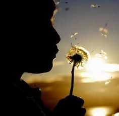 Deus nosso Pai,   que Sois todo poder e bondade,   dai força àqueles que passam pela provação,   dai luz àqueles que procuram a verdade,  e ponde no coraç&ati...