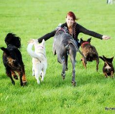 """Unsere liebevolle Tierbetreuerin Tamara vom """"Fellnasen Express"""" freut sich darauf, mit deinem Vierbeiner Gassi zu gehen. Seit ihrer Kindheit kümmert sich Tamara um Hunde und machte ihre Leidenschaft zum Beruf. Zu ihrem Profil geht es hier: http://www.schnuff-und-co.de/fellnasen-express-ihr-gassiservice.html"""