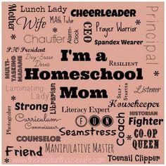 91 best Homeschool Humor, quotes, etc... images on Pinterest ...