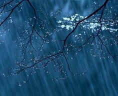 Rain Photography Graphics