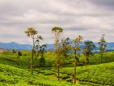 5 States to Explore in India in 2015