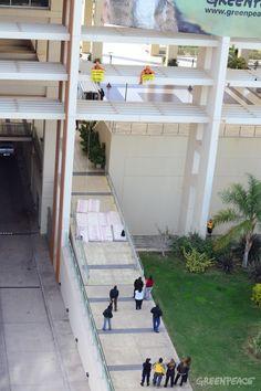 """Activistas de Greenpeace escalaron el frente del Centro Cívico de la Ciudad y colgaron un cartel gigante a más de 20 metros de altura, con la fotografía de un puma, animal representativo de la fauna en peligro, y la leyenda """"Gioja: San Guillermo sin minería"""".  Pedile ahora al gobernador José Luis Gioja que prohiba la minería en la Reserva: http://www.salvasanguillermo.org/index.php?referrer=pinterest_referrer=landing_puma_salva"""