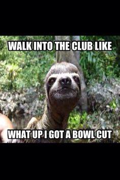 18 best funny sloth jokes images creepy sloth meme fall humor jokes - Funny sloth pics ...