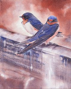 Barn Swallows, Watercolor on canvas