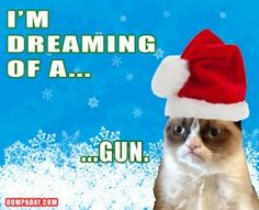 super ideas for funny christmas memes elf grumpy cat Grumpy Cat Christmas, Funny Christmas Cards, Christmas Humor, Funny Cats, Funny Animals, Funny Jokes, Hilarious, Funny Stuff, Funny Memes