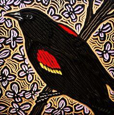 red-winged blackbird by Lisa Brawn, via Flickr