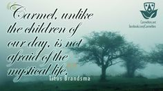 """""""Carmel, unlike the children of our day, is not afraid of the mystical life.""""  -  Titus Brandsma"""