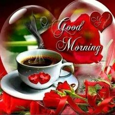 Start your day right with these beautiful good morning picture quotes that will help enrich, uplift and empower your day. Good Morning Gift, Good Morning Roses, Morning Morning, Good Morning Coffee, Good Morning Picture, Morning Pictures, Good Morning Images, Morning Greetings Quotes, Morning Quotes