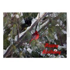 Cardinal 2928 Birthday Card - birthday gifts party celebration custom gift ideas diy