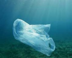 A new study finds that bits of plastic fill the Great Lakes, as in the oceans.