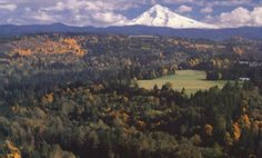 Jonsruds Viewpoint | Oregon's Mt. Hood Territory