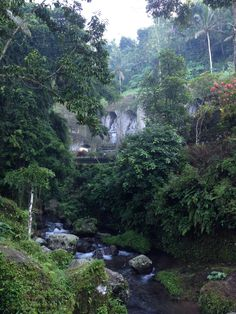 Gunung Kawi temple is one of the locations we practice yoga during the Divine Bali Bliss retreat!