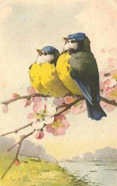 Vintage Songbirds ~ Catherine Klein