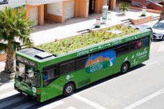 Azoteas verdes sobre ruedas