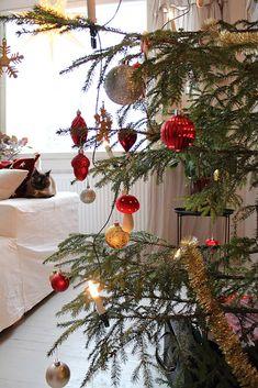 Joulua Christmas Wreaths, Christmas Tree, All Things Christmas, Tree Skirts, Holiday Decor, Teal Christmas Tree, Xmas Trees, Christmas Trees, Xmas Tree
