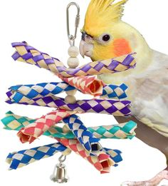 946 Bonka Bird Toys Shredburst is a colorful shred toy that your small to medium size bird will just love to shred and forage for the treats you have hidden inside. Cockatiel Toys, Budgies, Parrots, Small Birds, Pet Birds, Diy Chinchilla Toys, Parrot Toys, Bird Toys, Wooden Beads