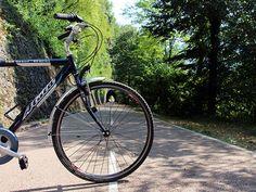 Se sei alla ricerca di un itinerario in bicicletta tranquillo ma fresco, ti proponiamo le migliori piste ciclabili della Lombardia da fare in estate