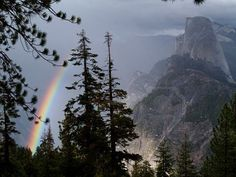 Plan to hike Half Dome this summer.