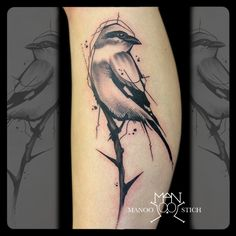 manoo stich tattoos, berlin www.stichpiraten.de #birdtattoo