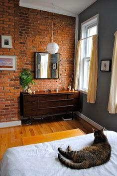 exposed brick wall in bedroom with bright windows letting in natural sunlight (cat not included)
