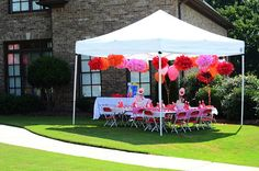 Polka Dot Birthday Supplies, Decor, Clothing: Michelles Pink Polka Dot ELMO Birthday Party