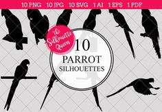 Parrot Silhouette Vector Graphics includes PNG files with transparent backgrounds at The PNGs are approximately 10 inches at it's widest point. Silhouette Clip Art, Animal Silhouette, Black Silhouette, Tree Silhouette, Silhouette Studio, Red Bird Tattoos, Black Bird Tattoo, Free Graphics, Vector Graphics
