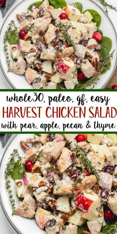 This harvest chicken salad is loaded with the best seasonal flavors like apples, pears, cranberries, pecans and thyme. It's a Paleo, gluten and dairy-free version of a traditional mayo chicken salad that's been revamped to hold a spot on the holid Paleo Menu, Paleo Recipes Easy, Paleo Dinner, Dairy Free Recipes, Whole Food Recipes, Whole30 Recipes, Paleo Food, Paleo Salad Recipes, Diet Recipes