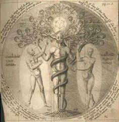 Mysterium Magnum, Jacob Boehme -- Man only (amongst all the Earthly Creatures) has a tree-fold body, and spirit: For he has also the internal spiritual world in him; which is likewise two-fold: viz. light and darkness; and also corporally and Spiritually: This Spirit is the Soul...