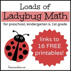 Ladybug Math for Preschool, Kindergarten  1st Grade