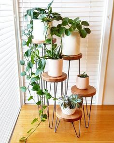 HARPER - Hairpin leg plant stand metal plant stand plant stand speaker stand side table hairpin leg table small table - 15 plants Home decor apartments ideas Metal Plant Stand, Indoor Plant Stands, Diy Plant Stand, Small Plant Stand, Decoration Plante, House Plants Decor, Vine House Plants, Plants For Living Room, Bedroom With Plants