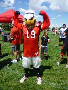 Southern Utah: SUU Thunderbirds mascot, Thor.