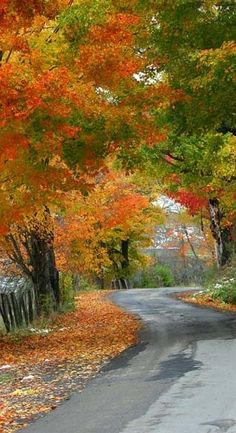 Autumn color on the back roads of West Virginia