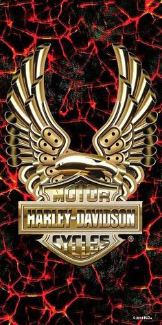 Creative and Modern Tips Can Change Your Life: Harley Davidson Dyna Fxr harley davidson street glide sons of anarchy.Harley Davidson Party Signs harley davidson forty eight stock. Harley Davidson Logo, Harley Davidson Street Glide, Harley Davidson Sportster, Harley Davidson Kunst, Harley Davidson Kleidung, Harley Davidson Merchandise, Harley Davidson Tattoos, Harley Davidson Helmets, Harley Davidson Gifts