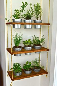 Condo Living Essentials: Converting the Unused to Usable When you create a he. - Condo Living Essentials: Converting the Unused to Usable When you create a herbal area, the foll -