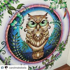 Owl, enchanted forest coloring book, secret garden, adult coloring, purple, beautiful, colorful, completed work, completed picture, inspiration,
