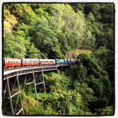 #Kuranda Scenic Railway - an amazing journey through our mountainous rain-forest.