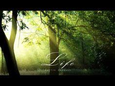 Mattia Cupelli - Love & Loss - Full Album [2013] - YouTube