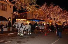 Christmas Tree Lighting Dallas, TX #Kids #Events