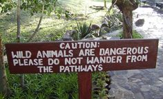 """""""Safe pathways? This sign was on the grounds of a lodge in Tanzania. So I guess this means that you are safe as long as you stay on the pathway!"""" (From: 19 Hilarious Travel Signs From Around The World)"""