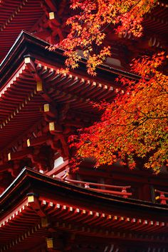 Pagoda in autumn, Joruri-ji temple 浄瑠璃寺, Kyoto, Japan