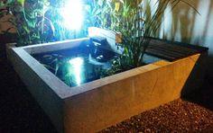 La vida en el estanque estanques propios y vida for Estanque koi construccion