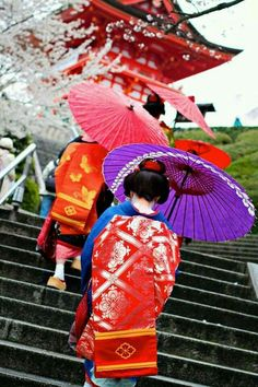 Geisha in Kyoto Japan Japanese Geisha, Japanese Beauty, Japanese Kimono, Asian Beauty, Okinawa, Carpe Coi, Samurai, Japon Tokyo, Kyoto Japan