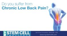 Lower back pain can affect anyone and often, it can create excruciating pain. It is a debilitating medical condition which severely impacts a person's quality of life doing so every day. Call Us Chronic Lower Back Pain, Low Back Pain, Acl Tear, Knee Pain Relief, Stem Cell Therapy, Pain Management, Stem Cells, Nyc