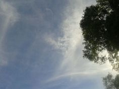 Angel in the sky..