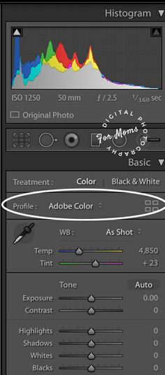 Lightroom Classic CC Update: Creative Profiles for Quick Edits – Digital Photography for Moms