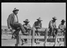 Cowboys sitting on corral fence. Roundup near Marfa, Texas