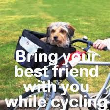 Image result for bike carrier for dogs