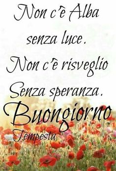 16460 buongiorno Italian Memes, Italian Quotes, Good Morning Good Night, Good Day, Sayings, Gandhi, Facebook, Joseph, Snoopy