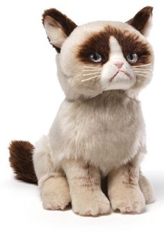 Gund 'Grumpy Cat' Stuffed Animal on shopstyle.com