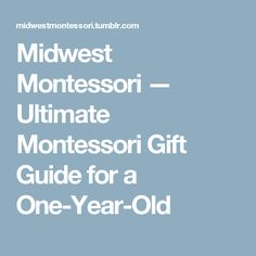 Midwest Montessori — Ultimate Montessori Gift Guide for a One-Year-Old